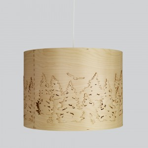 Norwegian Forest Pendellecuhte Northern Lighting